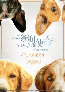 [一条狗的使命|A Dog's Purpose][2017][1.41G]