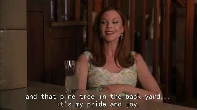 [绝望主妇 第四季|Desperate Housewives Season 4][2007]