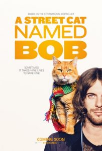 [流浪猫鲍勃|A Street Cat Named Bob][2016][1.91G]