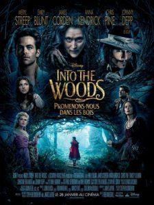 [魔法黑森林|Into the Woods][2014][2.69G]
