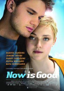 [活在当下|Now Is Good][2012][1.94G]