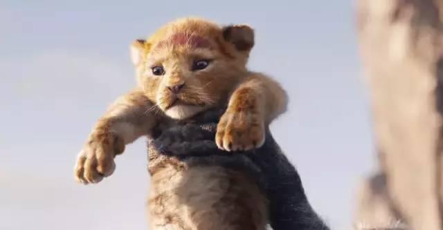 《狮子王》算个啥,迪爸爸明年新片一个比一个猛!