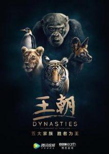 [王朝|Dynasties][2018]