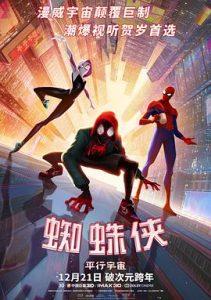[蜘蛛侠:平行宇宙|Spider-Man: Into the Spider-Verse][2018][3.06G]