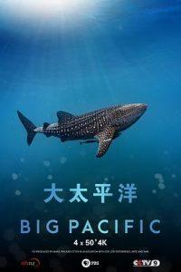 [大太平洋|Big Pacific][2017]