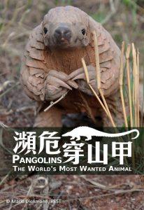[穿山甲:被捕杀最多的动物|Pangolins: The World's Most Wanted Animal][2018][1.34G]