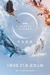 [完美星球|A Perfect Planet][2021]