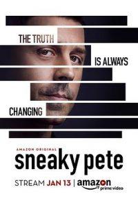 [诈欺担保人 第1-3季|Sneaky Pete Season 1-3]
