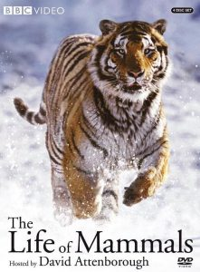 [哺乳类全传|The Life of Mammals][2002]